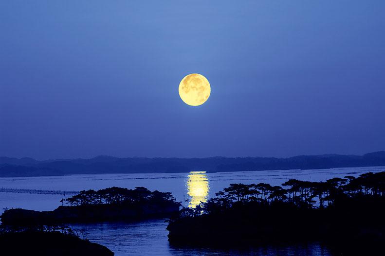 生き続ける歴史と、変わらぬ自然の美しさ「松島」