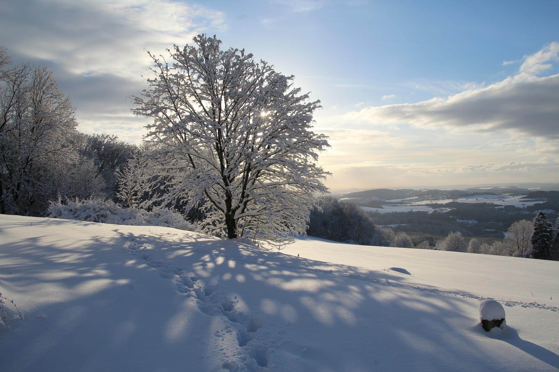 冬の季節の言葉